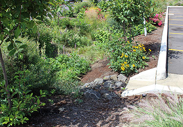 Stormwater Qualtiy Project, Oregon